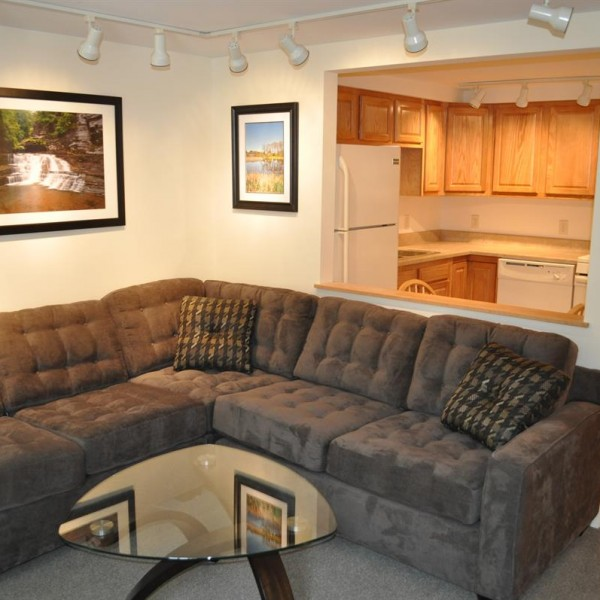 apartments for rent in ithaca 203 Williams Street 32